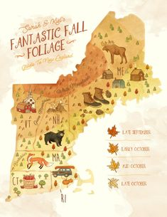 The New England Guide to Leaf Peeping - Classy Girls Wear Pearls Oh The Places You'll Go, Places To Travel, New England Fall Foliage, Fall In New England, New England Usa, England Map, New England Travel, To Infinity And Beyond, Future Travel