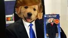 Dognald Trump