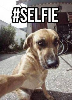 Lol #selfie
