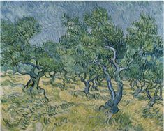 Olive Trees by Van Gogh - Van Gogh - Canvas Artwork Canvas Artwork, Canvas Art Prints, Painting Prints, Van Gogh Olive Trees, Van Gogh Landscapes, Vincent Willem Van Gogh, Van Gogh Art, Van Gogh Paintings, Photo Tree