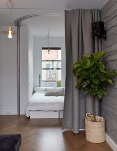 When friends visit, the office is flipped into a sleeping space and sealed by a curved Hufcor accordion door. Seating cubes by LifeEdited can be rearranged to form a full- or queen-size bed. An Edyn garden sensor monitors the fig tree; the wall-mounted speaker is by Kanto.