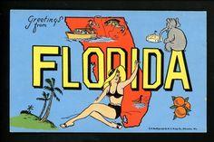 Large Letter Like linen postcard Cartoon Comic Style Kropp CM4 Florida FL