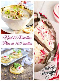 Avec cette sélection de plus de 100 recettes de cuisine, trouvez votre bonheur pour le menu de Noël ou du réveillon : bûches de Noël, verrines, foie gras ..