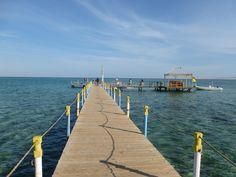 Nabq Bay, Egypt