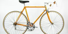 Fausto Coppi - Rider Portrait