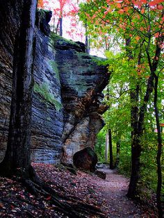 Cuyahoga Valley National Park, West Side Cliffs in Virginia Kendall Park (part of Cuyahoga Valley National Perk) - Ohio Places Around The World, Oh The Places You'll Go, Places To Travel, Places To Visit, Around The Worlds, Beautiful World, Beautiful Places, Parque Natural, Nature Scenes
