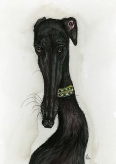 Every cloud has a silver lining - Greyhound Dog Elle Wilson