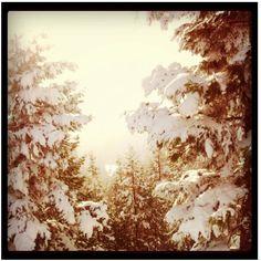 Mt. Ashland, OR.  I love the snow!
