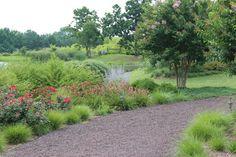 Strolling gardens on an old farm - traditional - Landscape - Dc Metro - Revolutionary Gardens