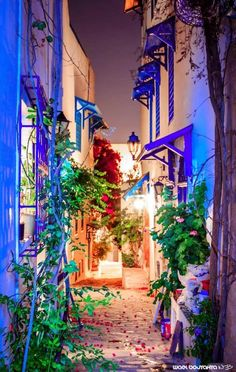 Sidi Bou Said, Tunisia  Beautiful