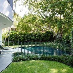 #pool #fence #detail by @tzarchitecture we softened the connection point to the ground with #giant #mondo #grass. I love this garden it's really #elegant and suits the unusual curved house and pool. #architect #landscapearchitecture #garden #collaboration #sydney