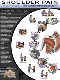 Tweet Tweet Shoulder pain can be quite frustrating to deal with. Not every shoulder pain is the same though. If you have injured your shoulder and would like to get a better idea what is causing you grief, this infographic by RealBodyWork.com can help: