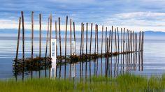 Nathalie Levasseur et l'assemblage moderne de fibres brutes Saint Symphorien, Galerie D'art, North West, Wind Turbine, Coast, Canada, Laurent, Nature, Park