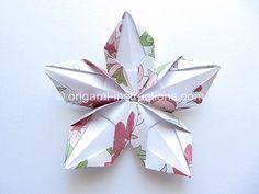 Origami Design, Diy Origami, Gato Origami, Origami Simple, Origami Star Box, Origami And Kirigami, Origami Fish, Origami Paper Art, Origami Folding