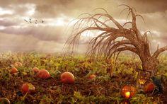 1574780, free desktop pictures halloween