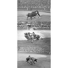 DE LA CORRIDA DE TOROS DE AYER EN MADRID. 1.-RAFAEL GÓMEZ (GALLO) EN UN LANCE DE CAPA. 2.-TORQUITO EN UNA VERÓNICA. 3.-BELMONTE REMATANDO UN QUITE:1917 Descarga y compra fotografías históricas en | abcfoto.abc.es