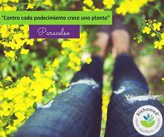 Las cualidades medicinales de las plantas han sido aprovechadas por miles de años. La #herbolaria es la base fundamentas e innegable de la farmacología moderna. En #CasaBiohomed ayudamos que sea parte de tu vida. #LoveYourSelf http://bit.ly/1TvHN80