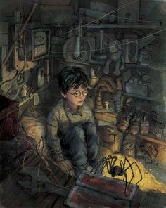 Harry Potter, crowded into the cupboard under the Dursleys' stairs. Artwork from the illustrated Harry Potter books!