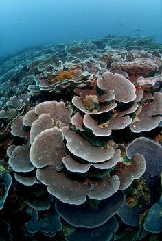 Beautiful Oceanography    http://ahoymateyyachts.tumblr.com/