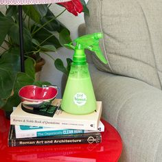 DIY Cleaning Products | POPSUGAR Smart Living Photo 40