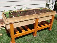 Above ground garden planter... instructables.com/id/Waist-High-Planter-Box/