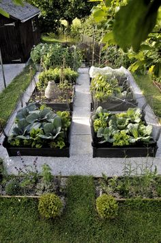 Best Edible Garden (Tied): Judy in Somerset, England - Gardenista - beautiful kitchen garden – black raised beds, gravel and concrete pavers, plant supports - Amazing Gardens, Beautiful Gardens, Best Edibles, Vegetable Garden Design, Vegetable Gardening, Organic Gardening, Vegetables Garden, Container Gardening, Urban Gardening