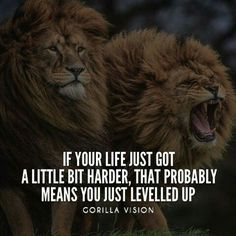 OMGQuotes will help you every time you need a little extra motivation. Get inspired by reading encouraging quotes from successful people. Life Quotes Love, Great Quotes, Me Quotes, Motivational Quotes, Inspirational Quotes, Quote Life, Random Quotes, Work Quotes, Famous Quotes