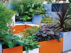 Geometric Patio Container Garden