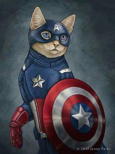 Capitán miau