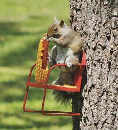 Red Retro Lawn Chair Squirrel Feeder - must....purchase...now...