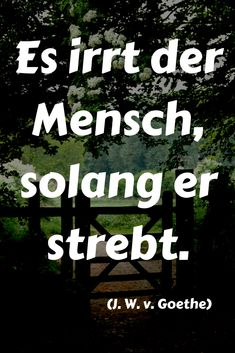 Johann Wolfgang Von Goethe, Pinterest Blog, Words, Quotes, Mottos, Movie Posters, Breathe, Philosophy, History Of Literature