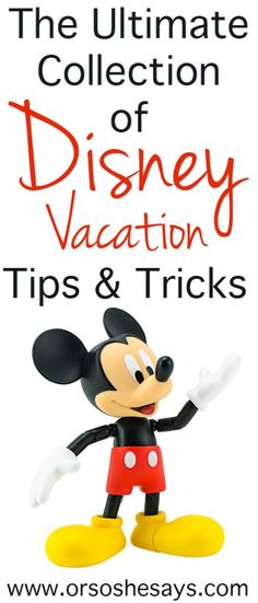Disney Everything ~ Disney Tips and Tricks & Family Vacation Ideas - Or so she says...