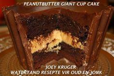 Ons het dié oulike sjokolade-skyfies, Chocola's, by Clicks gekoop. Jy kan ook Beacon se Mint Thins gebruik. 12 Klaargebakte Kolwyntiies LEKKER VERSIERSEL: 125 ml(½ k) koffielikeurstroop 1 k (250...