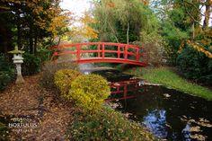 Garden Bridge, Outdoor Structures