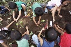 Best potting soil for vegetables.