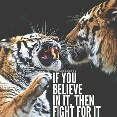 Forget what other people say and go for it. Fight for it as hard as you can and make it happen!