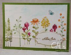 Kartenbox mit 5 Grußkarten, Sale-a-Bration Flowering Fields p. 12 #CarosBastelbude