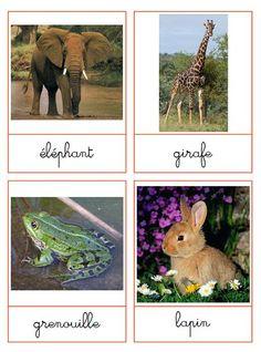 A la douce: Téléchargement Cartes de nomenclatures type montessori