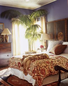 This bedroom is so elegant and peaceful with the large Kentia palm in the corner and the soothing colour pallet.