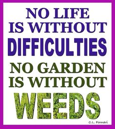 Take note.We all have weeds.