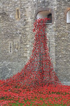 Stunning Installation of 888,246 Ceramic Poppies Honors Lives Lost in WWI - My Modern Met