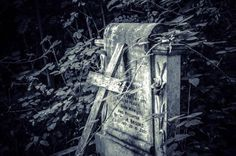peaceful old cemeteries | Perfectly old - Picture of Arnos Vale Cemetery, Bristol