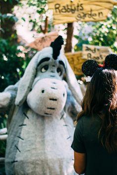 eeyore | winnie the pooh | character visits at Disneyland | Meeting Eeyore | Winnie the Pooh at Disneyland | Character Spots in Disneyland | Cute photos in Disneyland | Disneyland Characters |