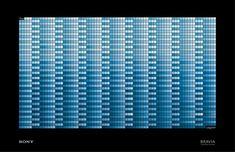 Sony Bravia: Blue