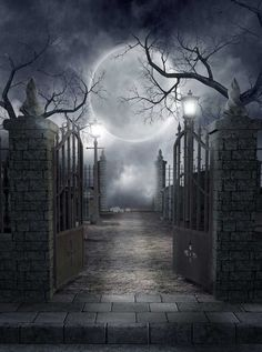 730 Moon Cemetery Halloween Backdrop