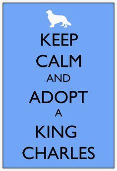 Keep Calm and Adopt a King Charles Cavalier 8x10 print