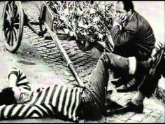 Pier Paolo Pasolini racconta Pasolini - #neorealism #director #regista #movie #cinema #pierpaolopasolini #pasolini