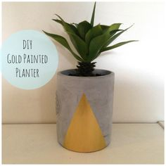 DIY Gold Painted Planter
