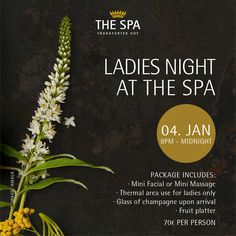 LADIES NIGHT AT THE SPA *** Book your tickets now for our Ladies Night happening on the first Monday of every month: thespa@steigenberger.com or 069 215 908