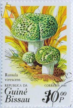 Green-cracking Russula mushroom, Republica da Guine-Bissau, Stamp